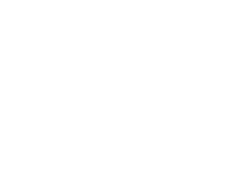 Logo Factory For Piu